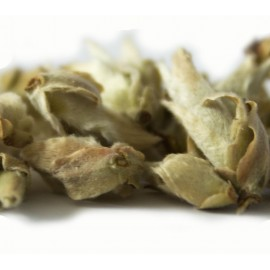 Wild Tea Buds Green Tea