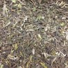 Darjeeling First Flush 2017 Phoobsering